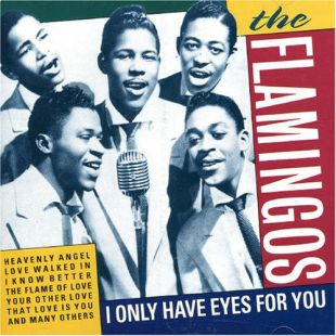 "The Flamingos: ""I Only Have Eyes For You"""